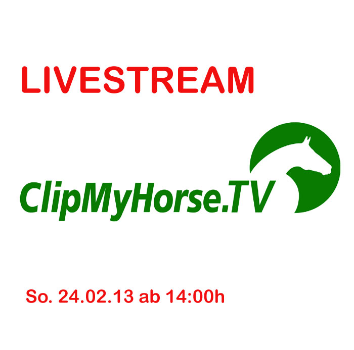 hengstvorf hrung live im internet bei clipmyhorse tv hengststation ahlers. Black Bedroom Furniture Sets. Home Design Ideas